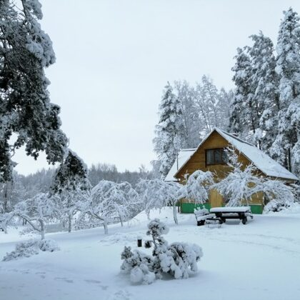 Dabas takas Viļakas noavdā ziemā