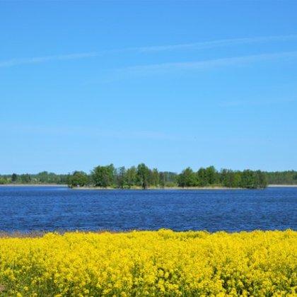 Viļaka pavasarī