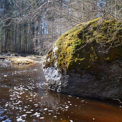 Pārgājiens pa Liepnas upes ieleju